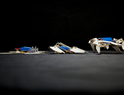 Recent cases of &#39accessible&#39 high-tech: Open source chips & Origami robots