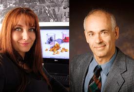 Amanda S. Barnard (Theory) and Joseph W. Lyding (Experimental)