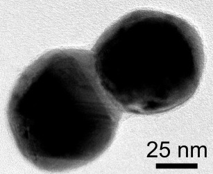 This electron microscope image shows a dimer of silver plated gold nanoparticles. A layer of silver connects the particles. Credit: D. Swearer/Rice University