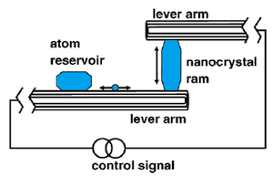 A nanocrystal ram is sandwiched between two MWNT lever arms. On one nanotube a metal particle serves as an atom reservoir that can source or sink atoms to or from the nanocrystal ram. The nanotube conveys the thermally excited atoms between the atom reservoir and ram. Credit: Regan et al. 2005 Nano Letters DOI: 10.1021/nl0510659