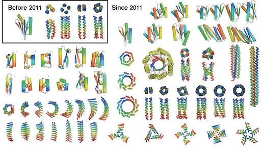 From de novo protein design to molecular machine systems